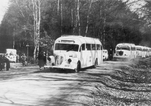 Svedish_Red_Cross_buses_in_Germany_WW2,_possibly_near_Friedrichsruh